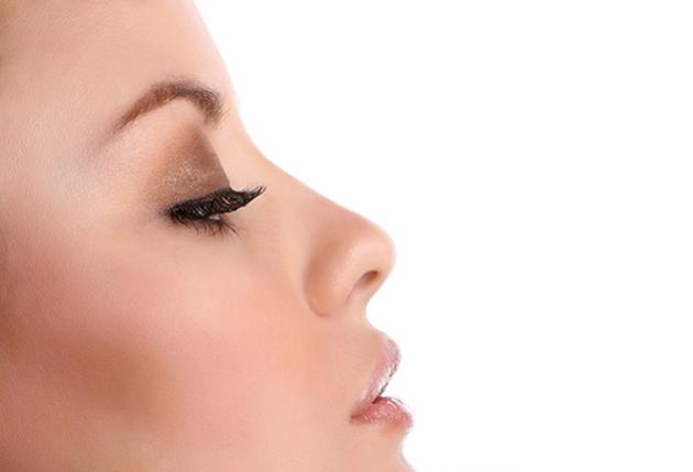 Аккуратный нос