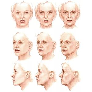 Старение - неизбежность или вариант развития?