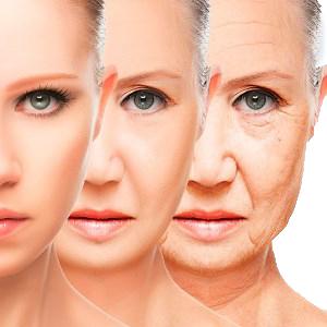 Смысл и причины возрастных изменений лица